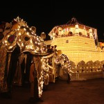 Elefanten auf der Esala Perahera Prozession in Kandy
