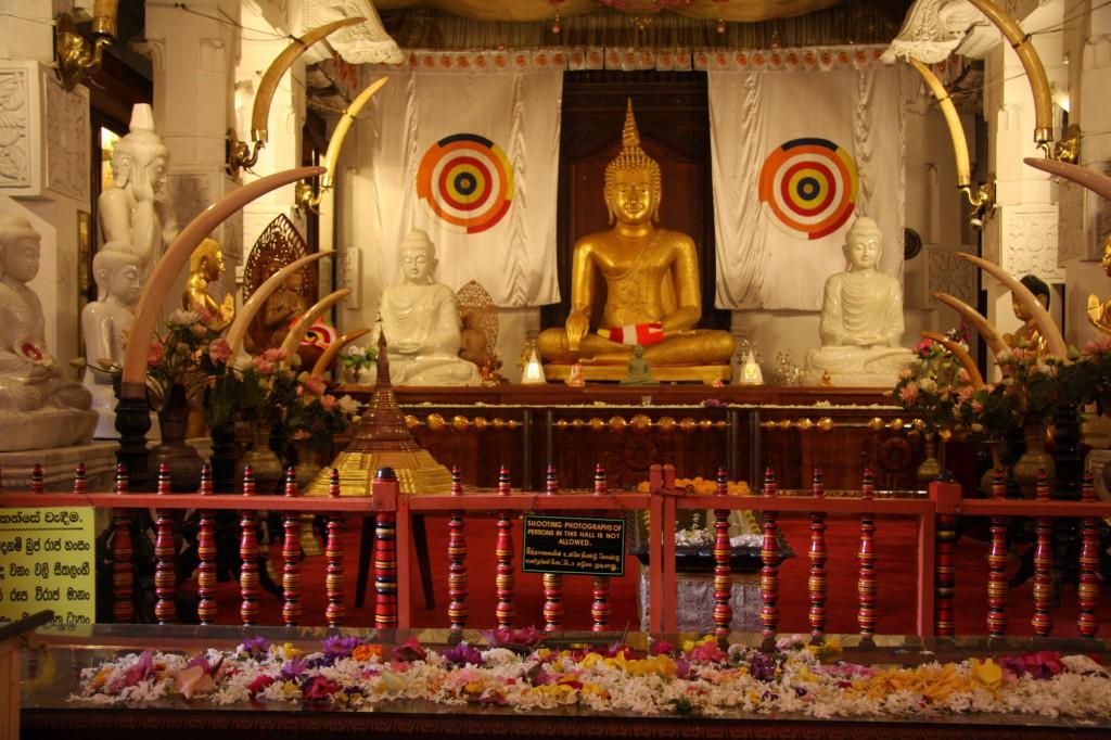 Das Innere des Zahnpalastes